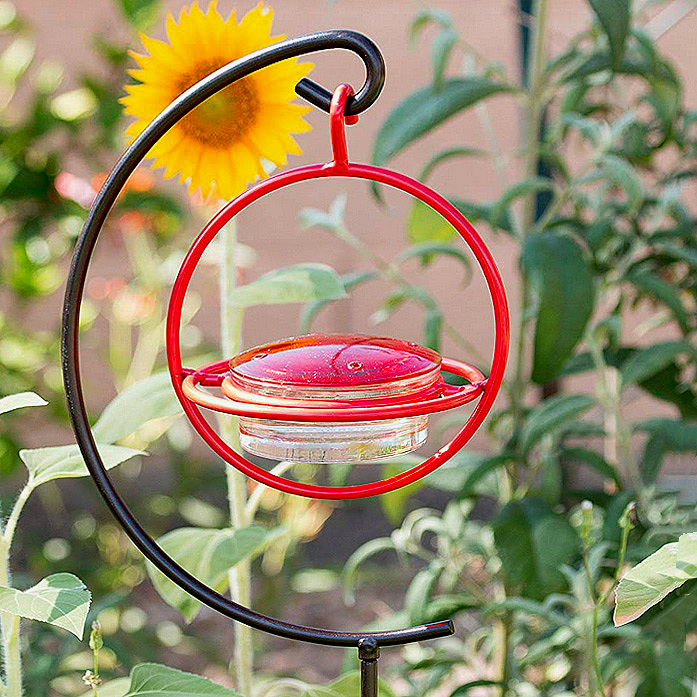 Best Small Glass Hummingbird Feeder with Red Perch - New Bee & Wasp Proof Design by We Love Hummingbirds