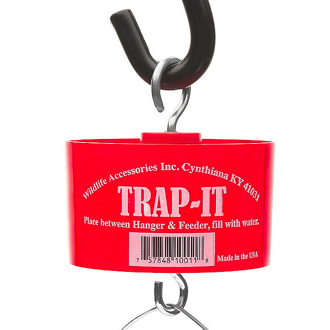 Ant Trap - Trap-It Moat by Wildlife Accessories