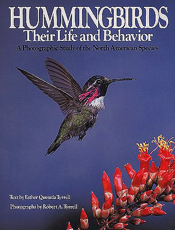 hummingbirds-their-life-and-behavior.jpg