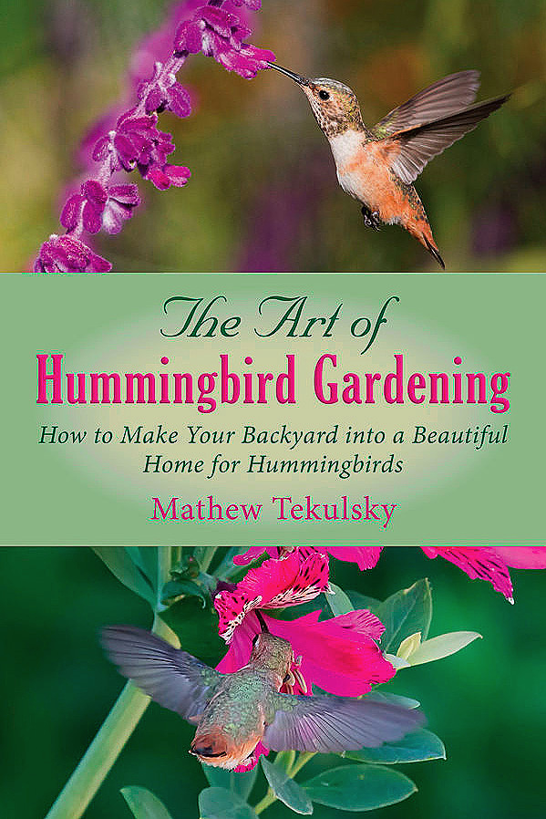 the-art-of-hummingbird-gardening-599-75.jpg