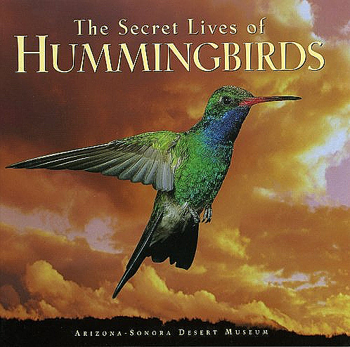 the-secret-lives-of-hummingbirds.jpg