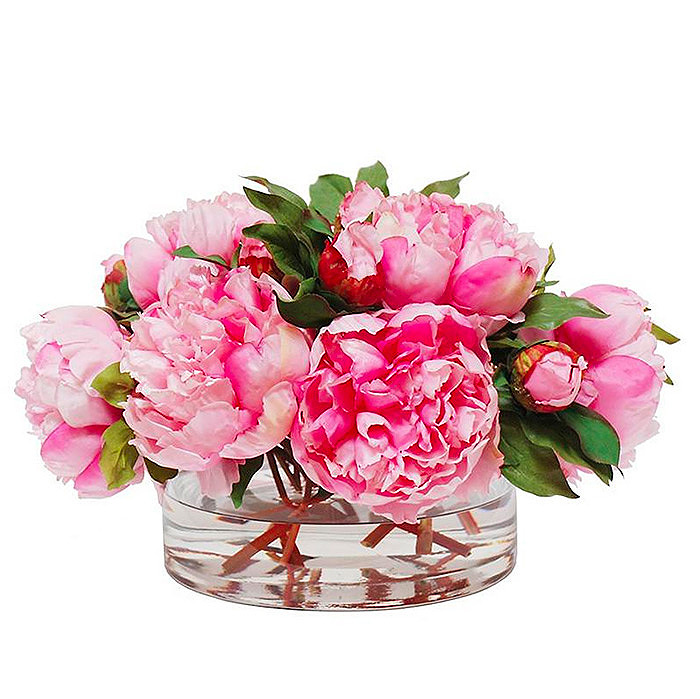 Peony in Open Cylinder Vase