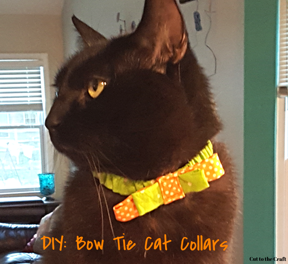 Everybody's crazy 'bout a sharp dressed cat!