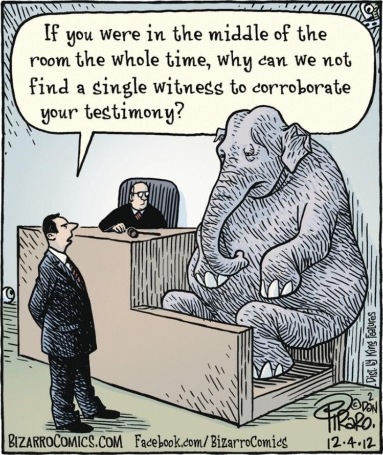 2018.04.10 Elephant in the room.jpg