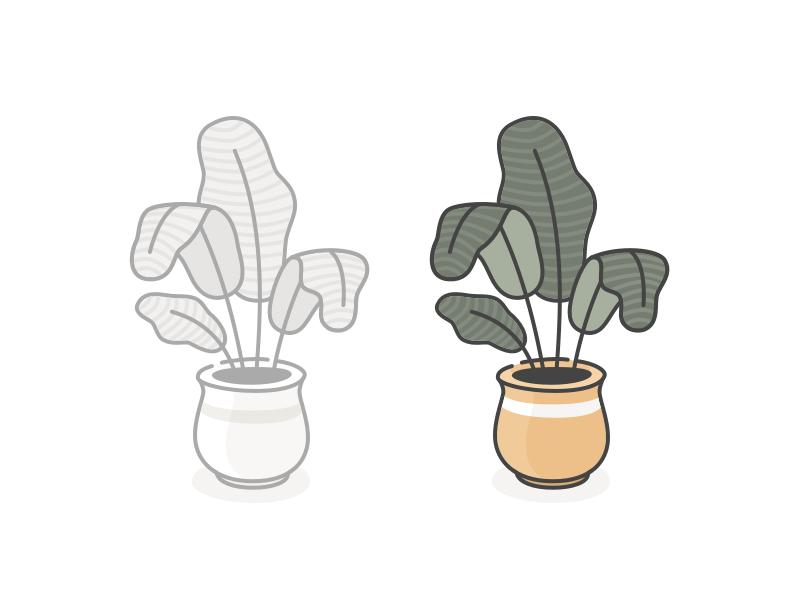 plant 01c.png