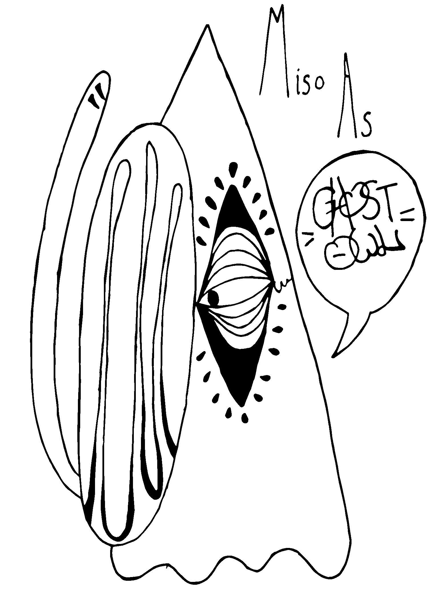 Ghost Owl.jpeg-page-001.jpg