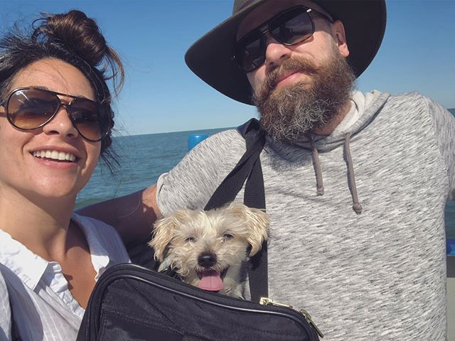 Straight up 🧀'n . . . . . . . . #happy #sunday #fam #lolarhodes #morkie #morkiesofinstagram #killer #cheese #goodtimes #toomanybugs #ohio #putinbay #smile #missingthegsd #travel #worktrip #hardlyworking #adventure #margaritas #lighthouse #ferryboat