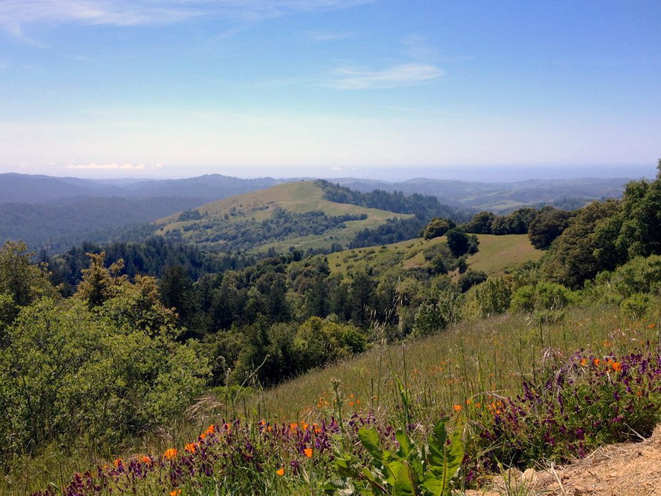 Russian Ridge Hike.jpg