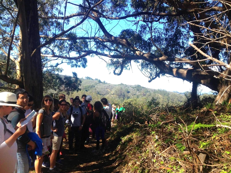 Hike at San Pedro Valley State Park