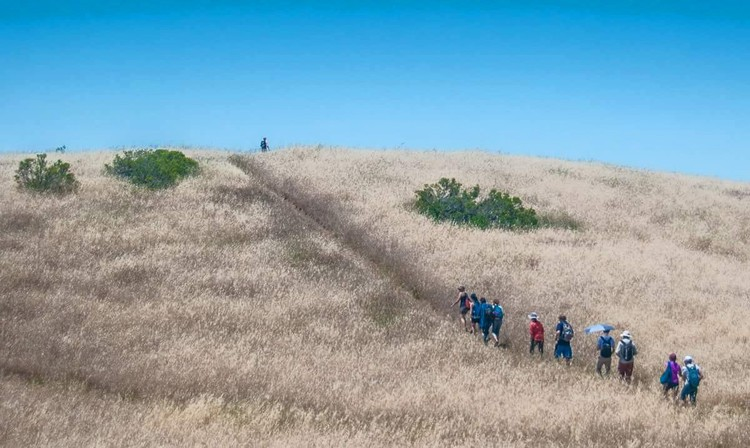 Hike at Monte Bello Open Space Preserve