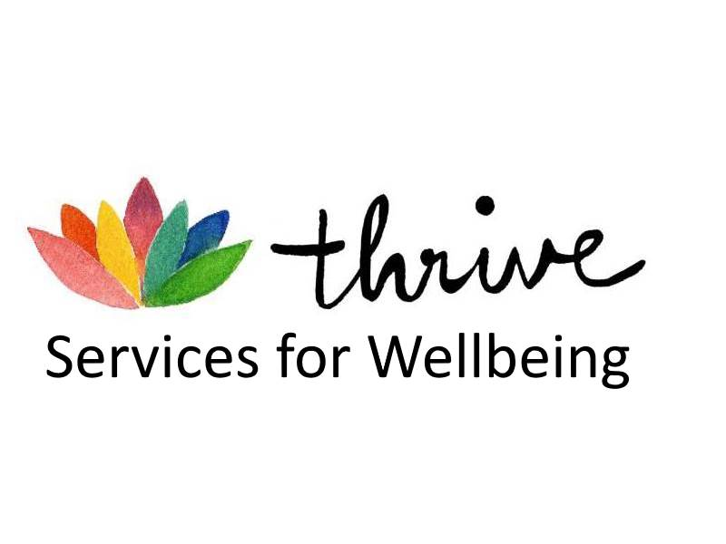 Thrive | writing support