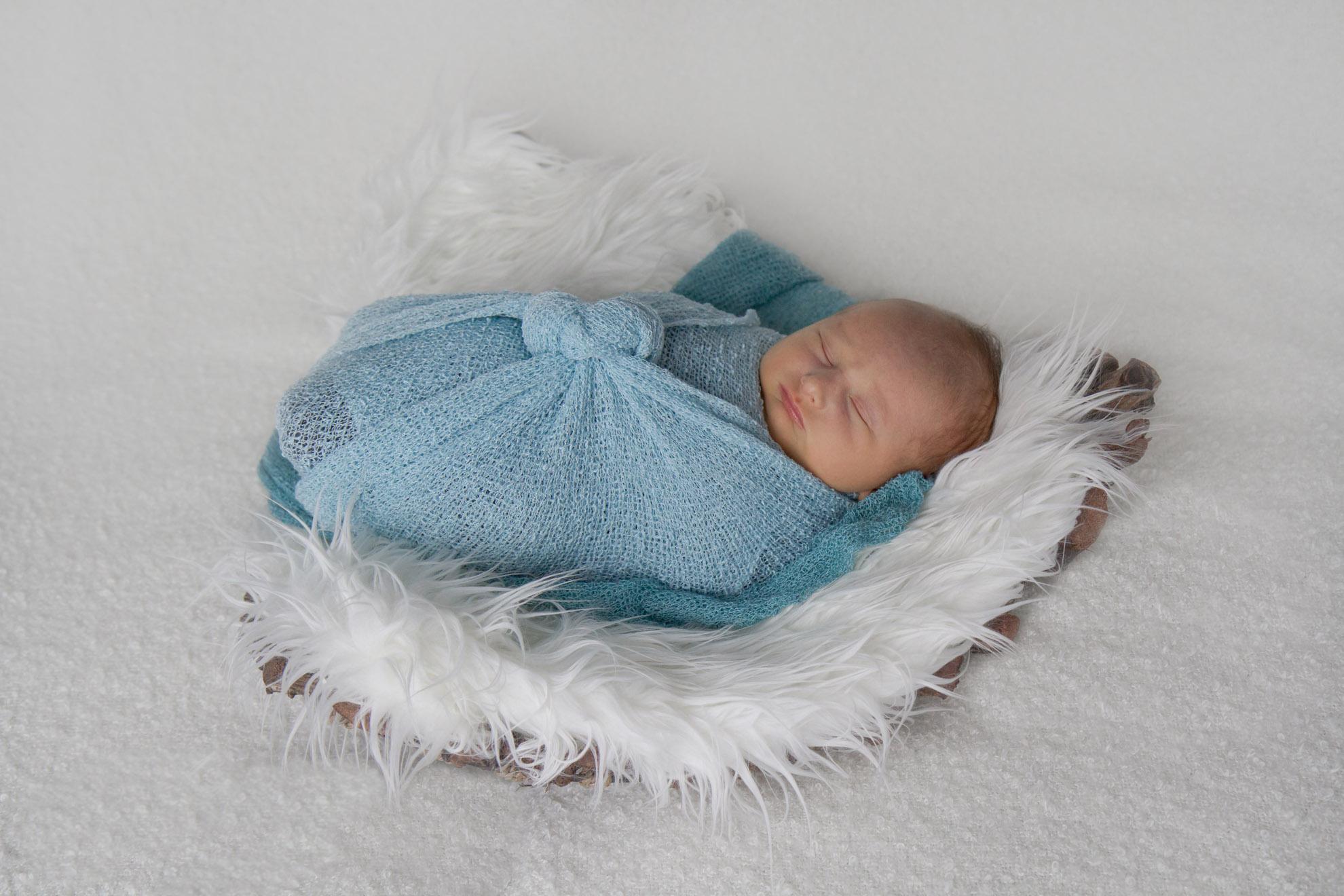 Waikato-baby-photographer.jpg