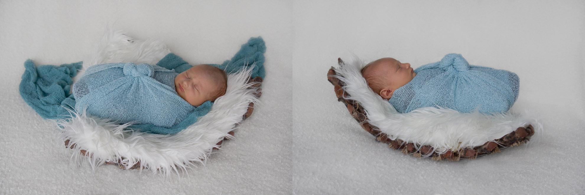 Waikato-baby-photography.jpg
