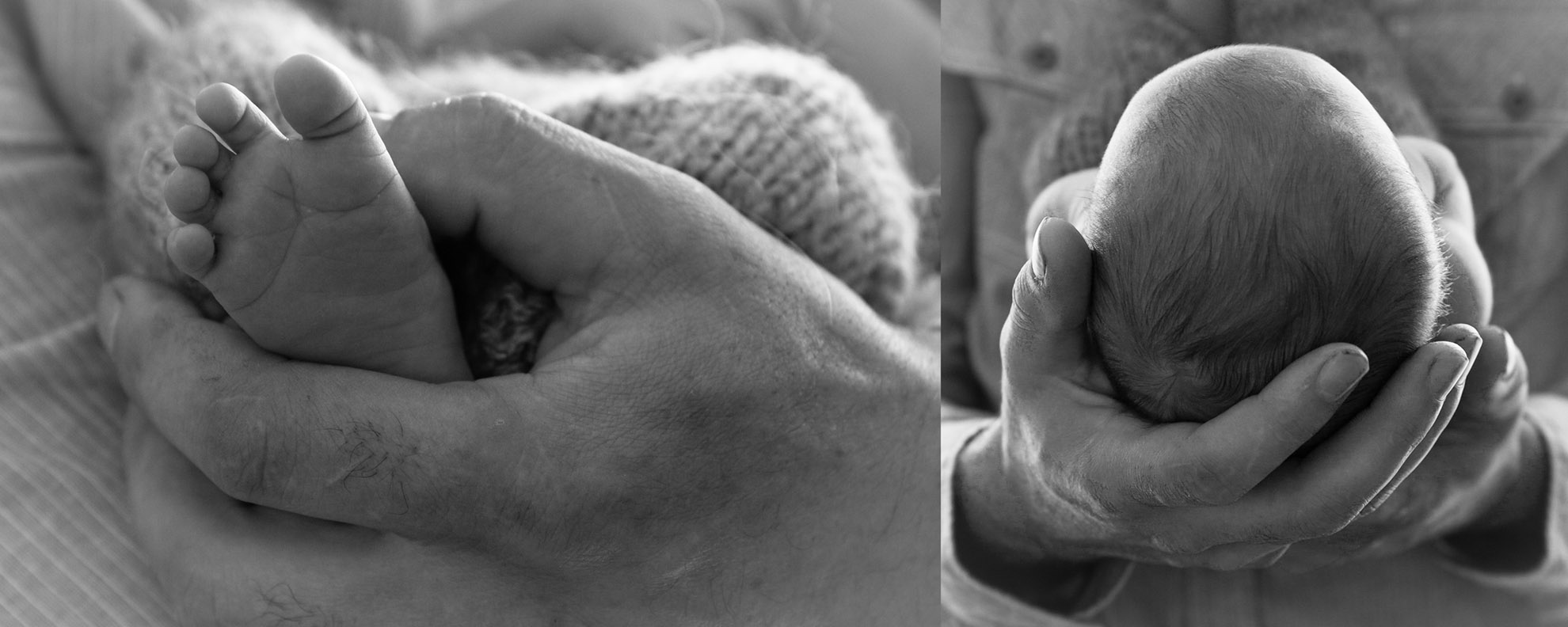 Hamilton-photographer-baby-in-dads-hands.jpg