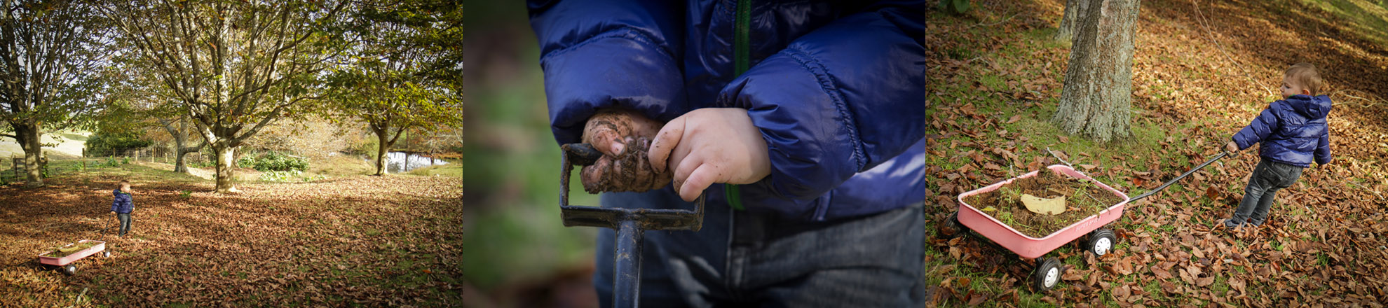 Hamilton-photographer-outdoor-play-session-with-toddler.jpg
