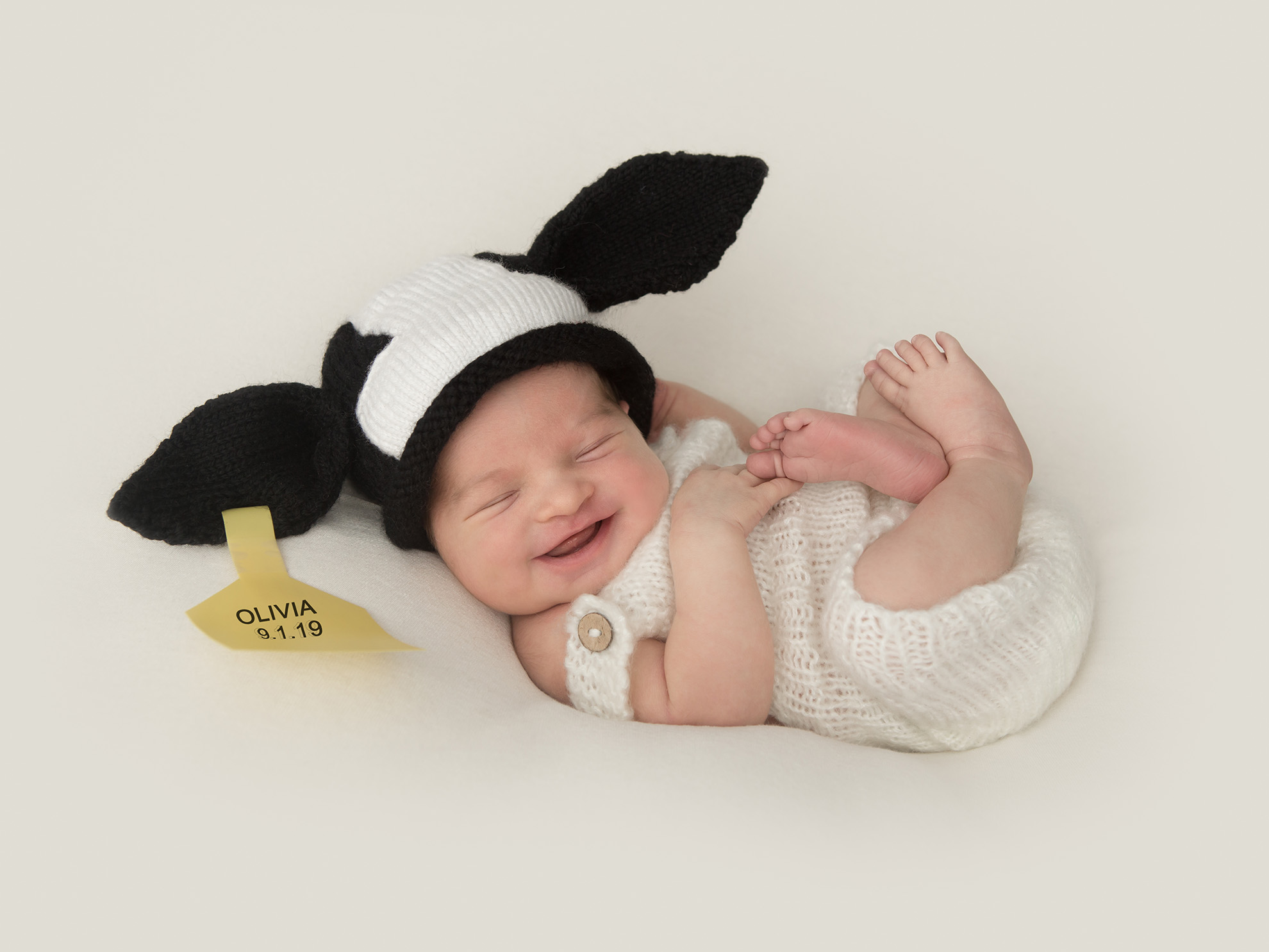 Newborn-photography-design-baby-cow-with-ear-tag.jpg