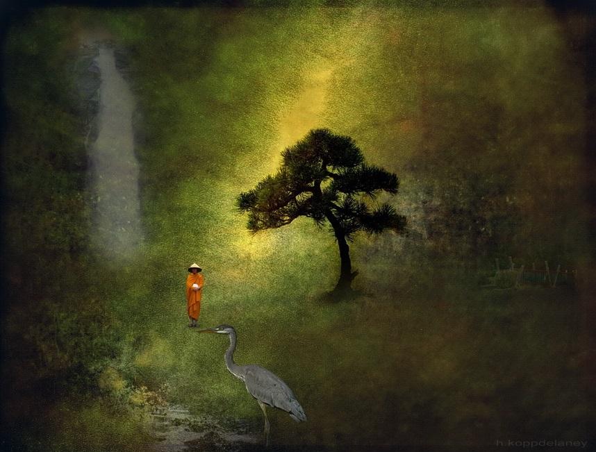 """( """"Zen Garden""""    Hartwig HKD)"""