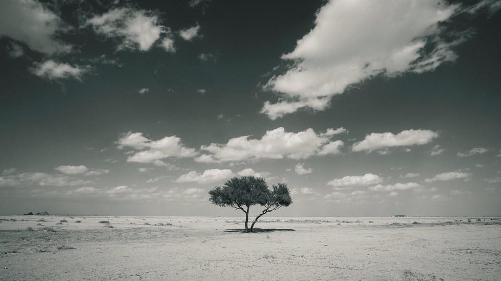 ( Loneliness  by Bilal Wirk)