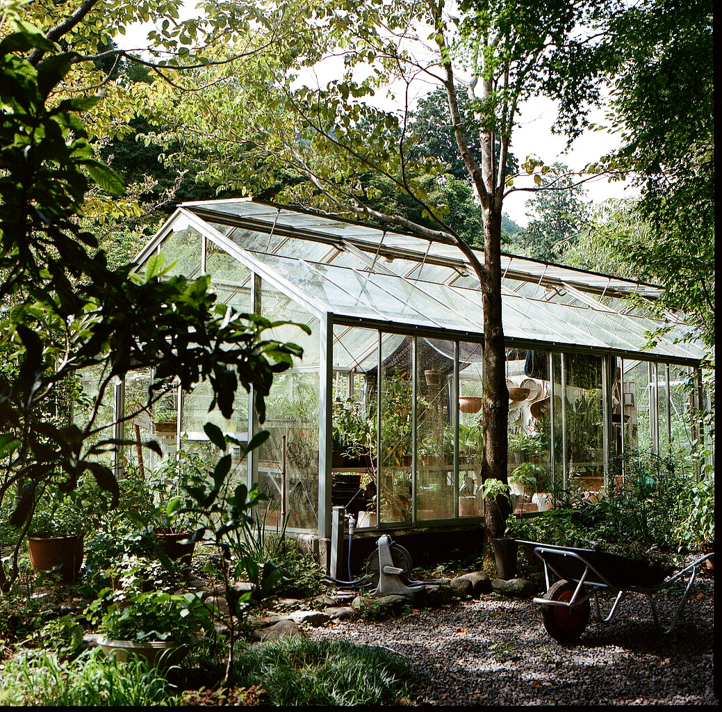 Greenhouse_web.jpg