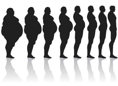 transition-fat_to_thin1.jpeg