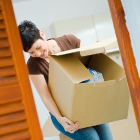 What does an Organiser do?