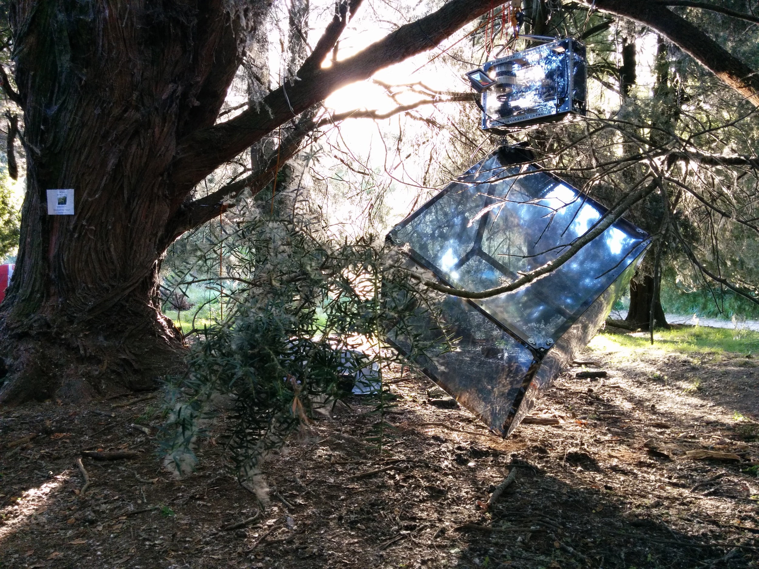 Yashoda with a clear view of 'Iron Man' during daylight at Kiwiburn Festival. Here, the sculpture was adapted to run exclusively on solar power.