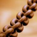 Broad_chain_closeup.jpg