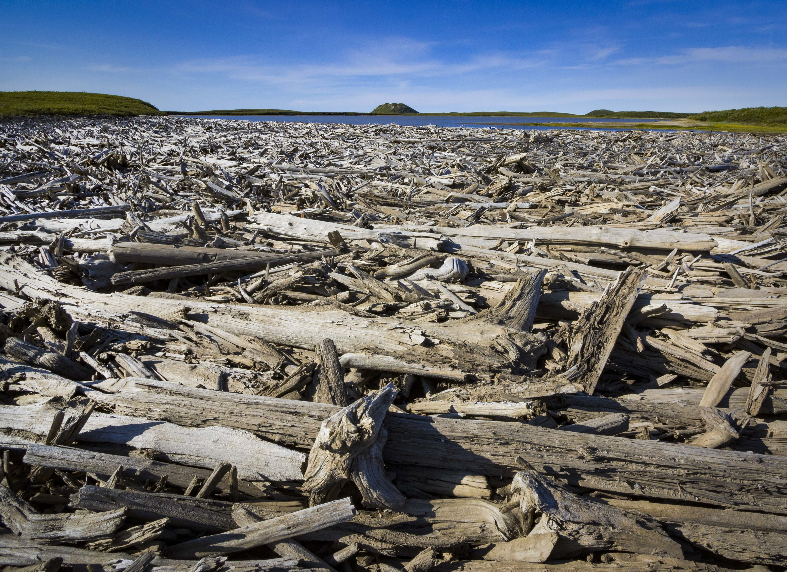 Dempster Highway, Roadtrip, Landscape, Arctic, rob gubiani, Tundra, Tombstone, Tuktoyuktuk, Inuvik, Dempster, Yukon, travel, wanderlust, log, logs, wood pile,