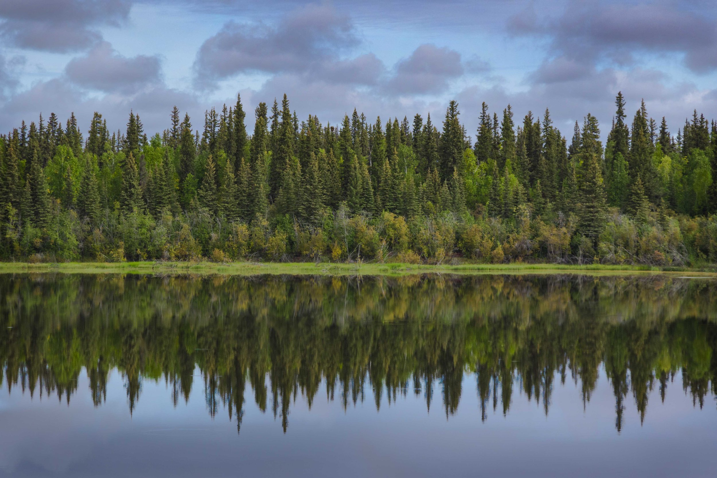 Dempster Highway, Roadtrip, Landscape, Arctic, rob gubiani, Tundra, Tombstone, Tuktoyuktuk, Inuvik, Dempster, Yukon, travel, wanderlust, boreal, forest, boreal forest reflection, mirror, lake,