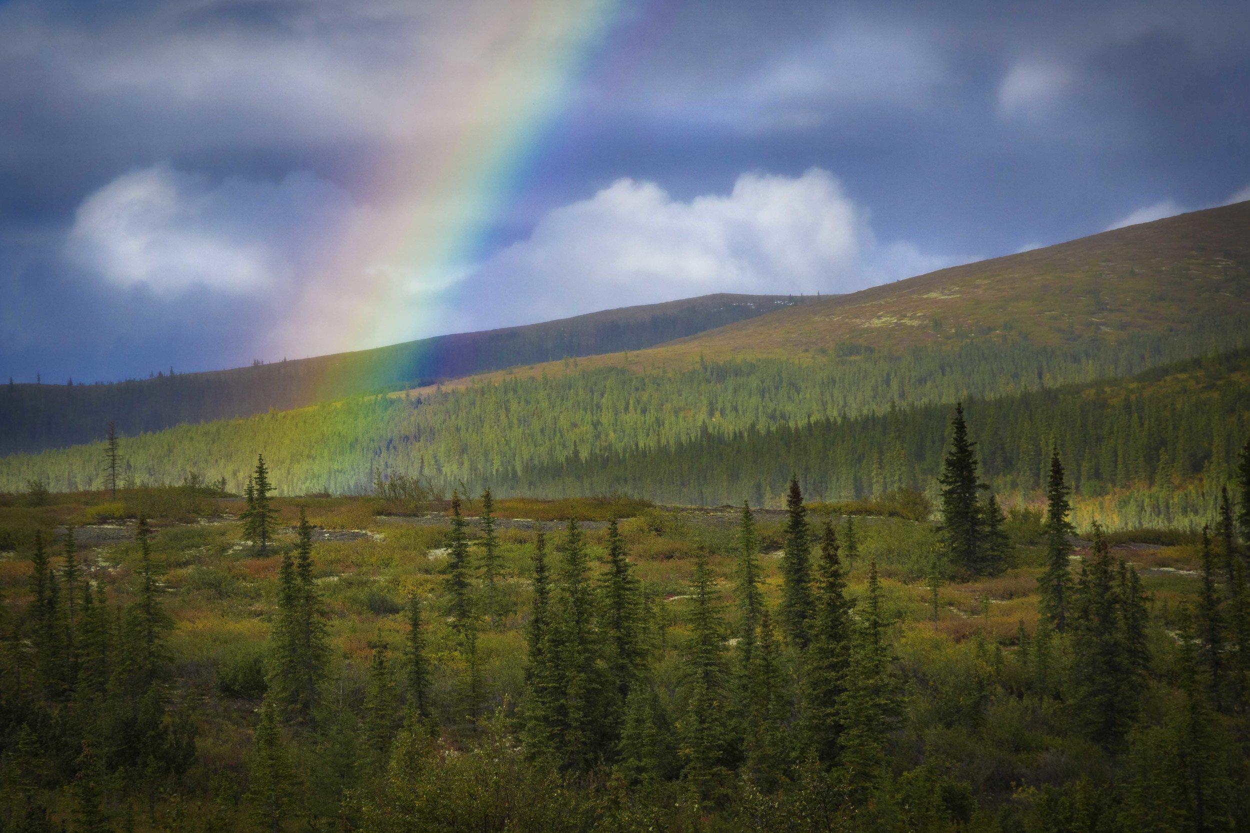 Dempster Highway, Roadtrip, Landscape, Arctic, rob gubiani, Tundra, Tombstone, Tuktoyuktuk, Inuvik, Dempster, Yukon, travel, wanderlust, boreal, forest, boreal forest, fall, autumn, rainbow,