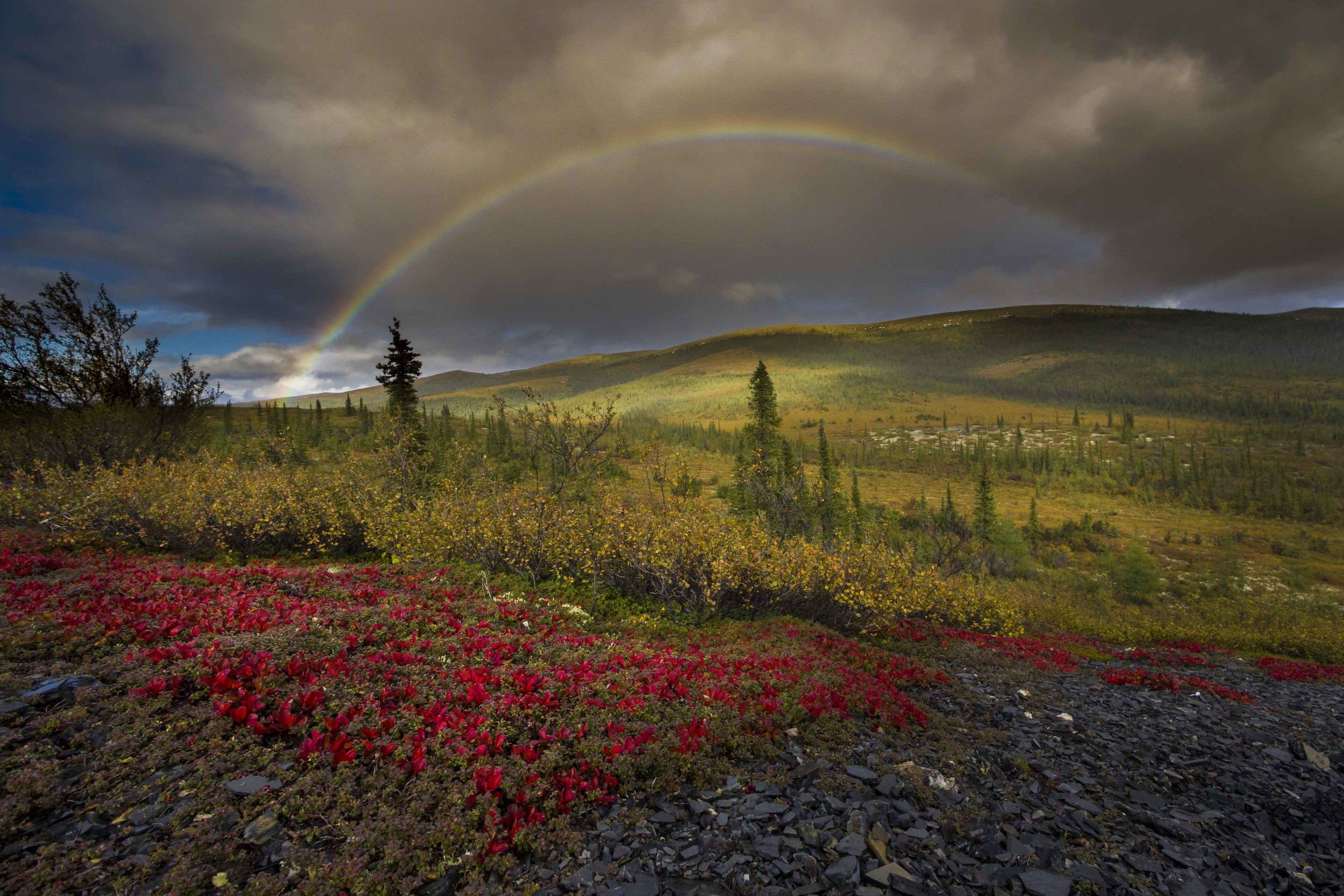 Dempster Highway, Roadtrip, Landscape, Arctic, rob gubiani, Tundra, Tombstone, Tuktoyuktuk, Inuvik, Dempster, Yukon, travel, wanderlust, rainbow