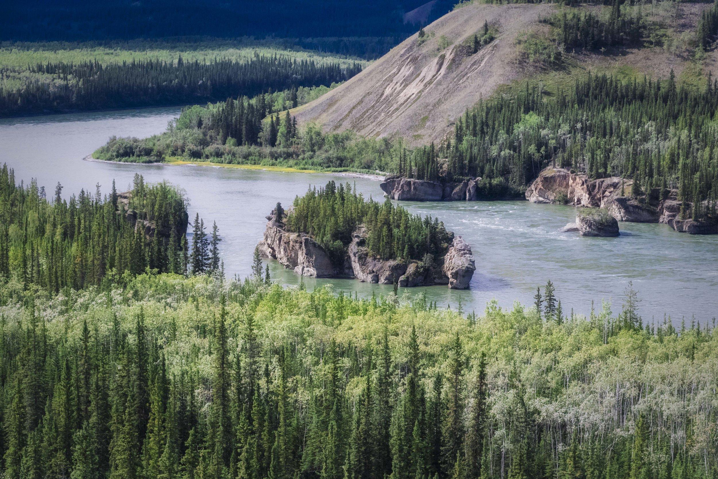 Dempster Highway, Roadtrip, Landscape, Arctic, rob gubiani, Tundra, Tombstone, Tuktoyuktuk, Inuvik, Dempster, Yukon, travel, wanderlust, boreal, forest, boreal forest