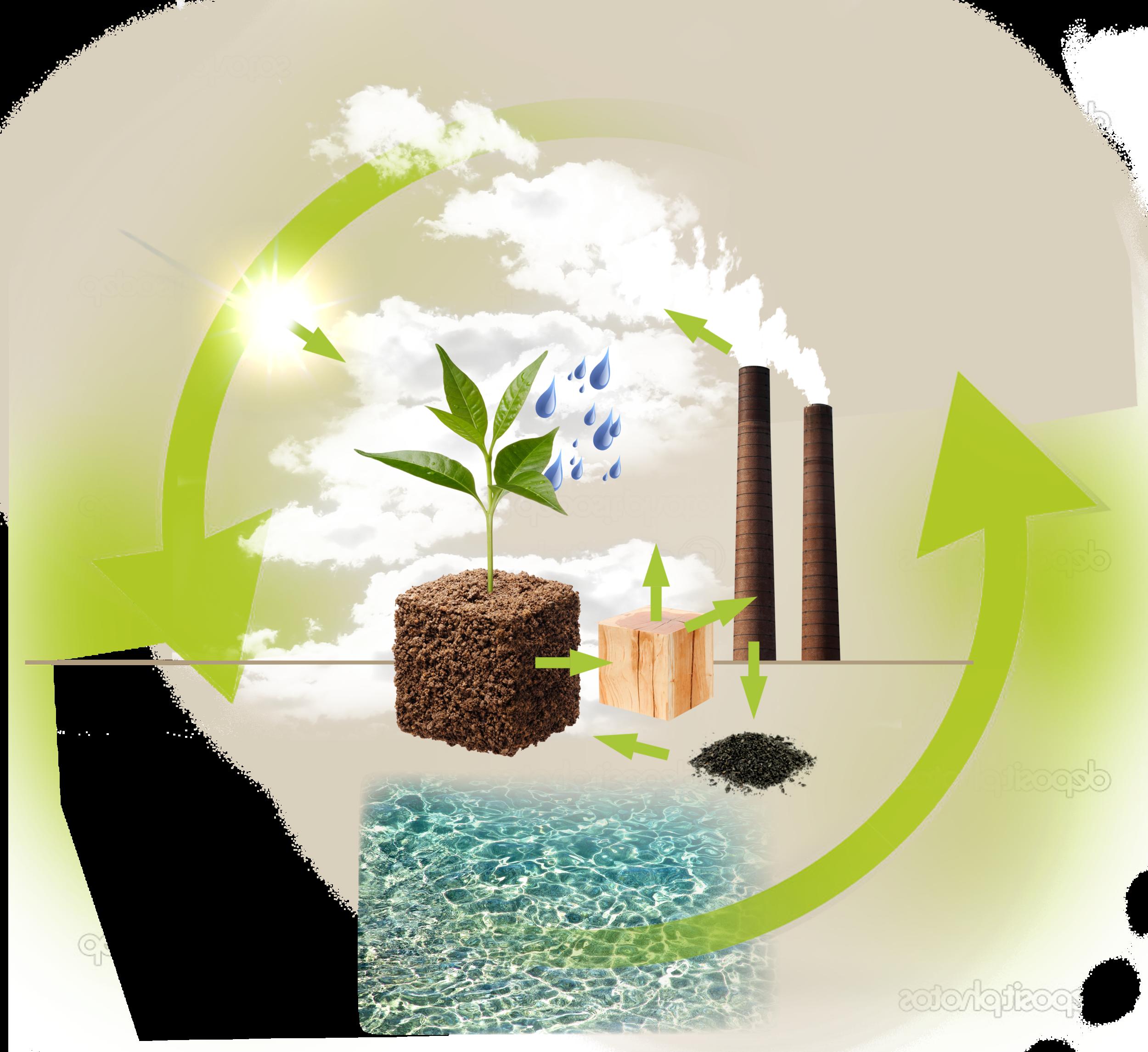 YOKOHAMA CO2-Grafik
