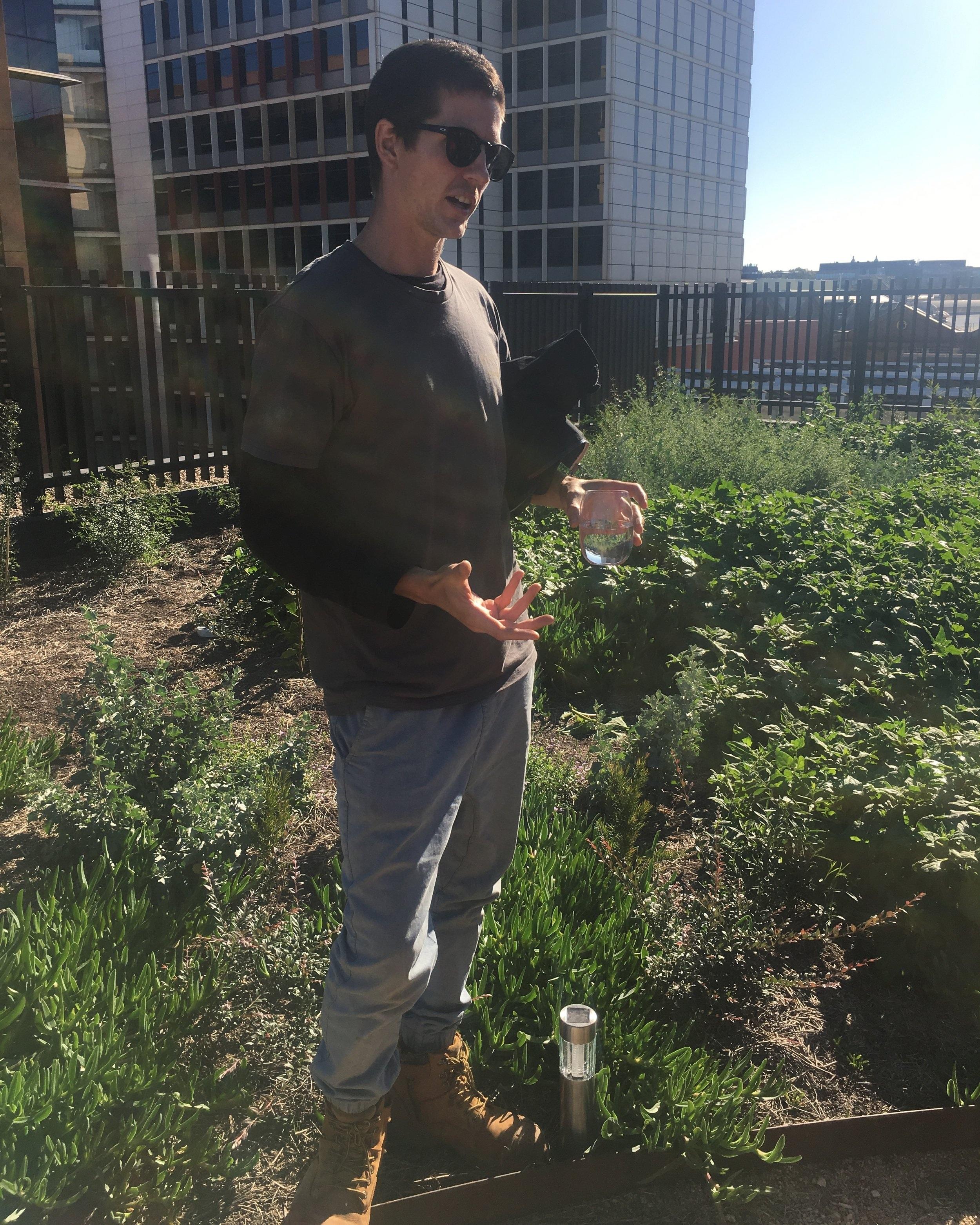 Matt explaining the rooftop planting patterns.   Source: Culture Scouts