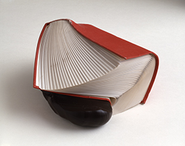 Proceedings or a Book around a Chestnut