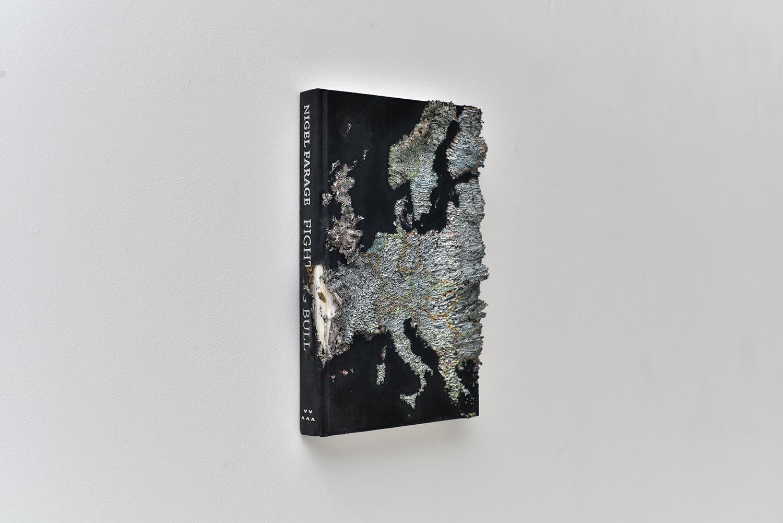 2017 'Europe in Nigel'. Paper. 24 by 16 by 4cm 15w detail.jpg