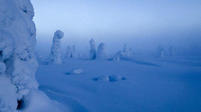 Dudes #tyypit #workwithview #arcticcircle #bluemind