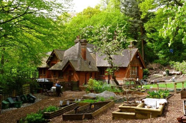 Queen's Wood Cafe & community garden