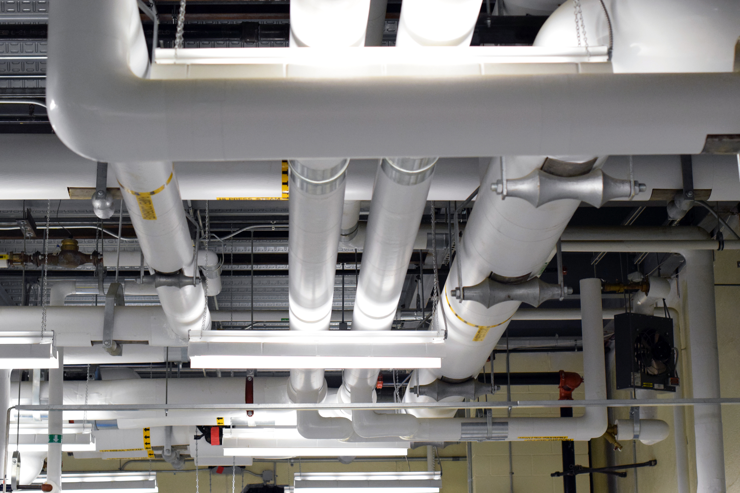 Invivotech Ceiling Pipes 01.jpg