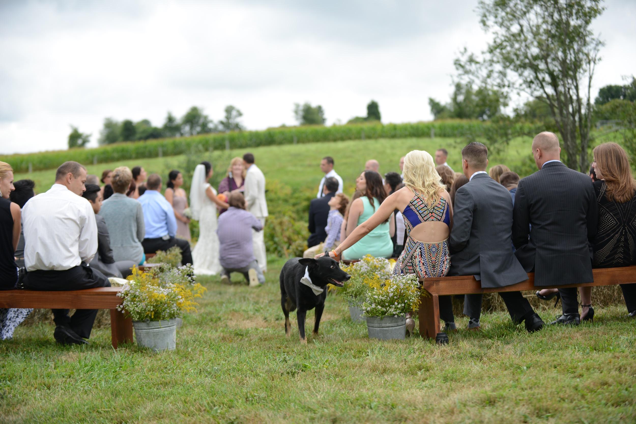 Detaille Weddings & Events (24).jpg