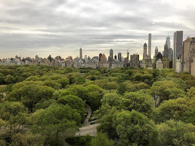 Hey NYC, happy eight years!Thankful for Central Park and practice rooms for keeping me sane. Wow!