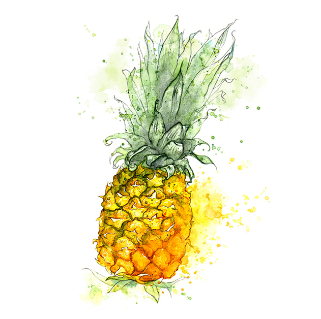Amy Holliday pineapple small.jpg