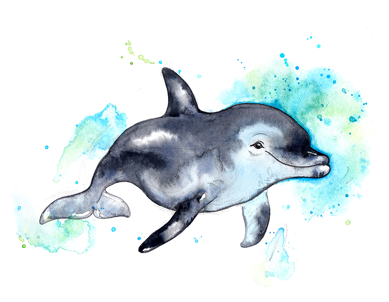 dolphin 3 colour small 2.jpg
