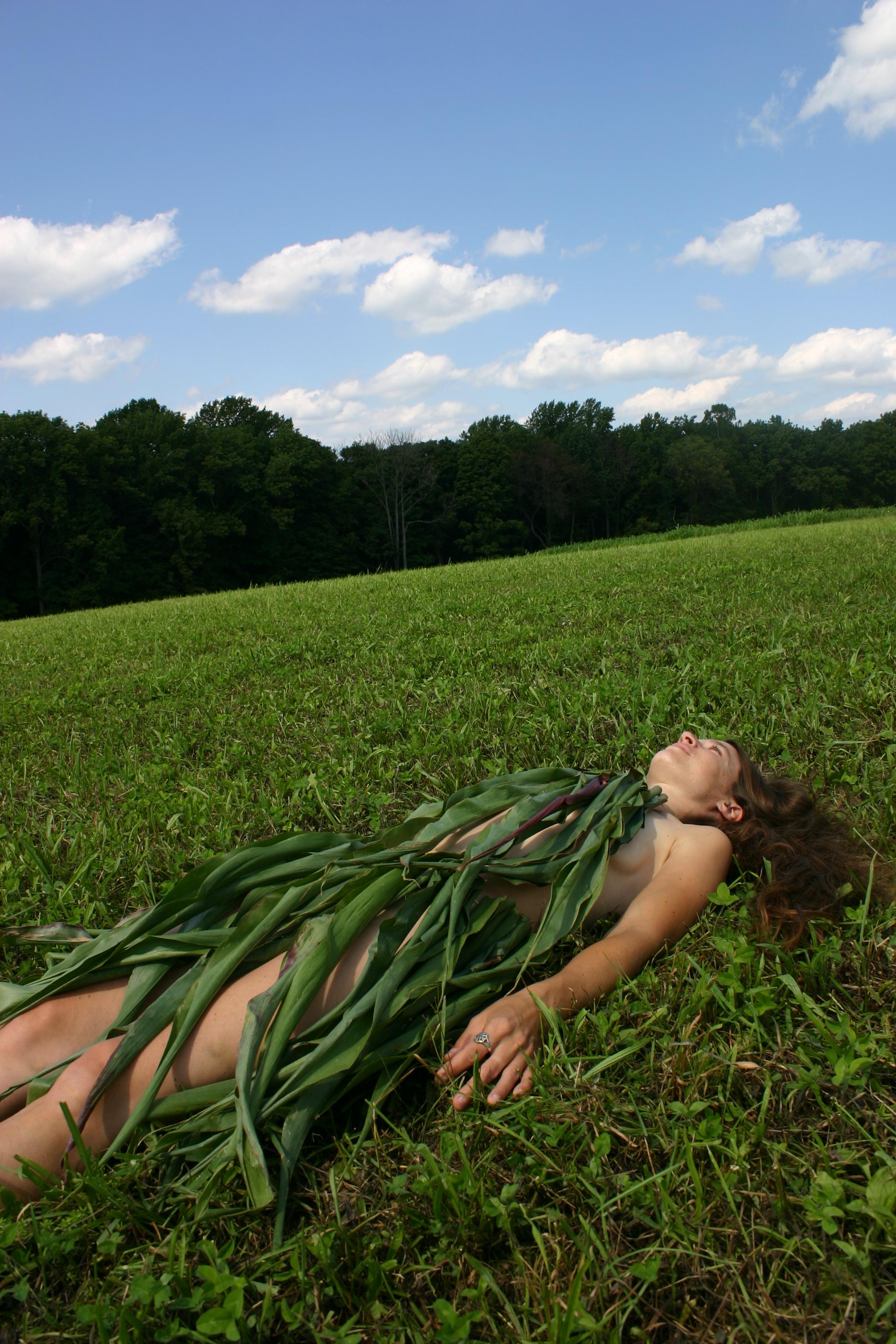 Corn Leaves 2.jpg