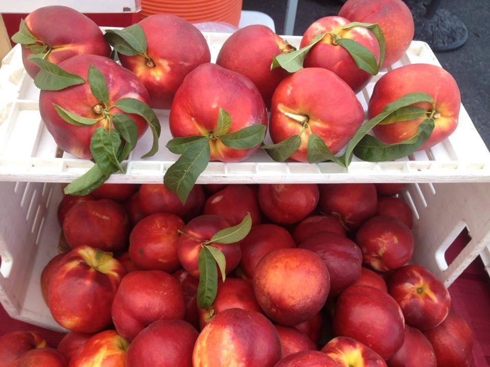 Moraga Farmers' Market Nectarines