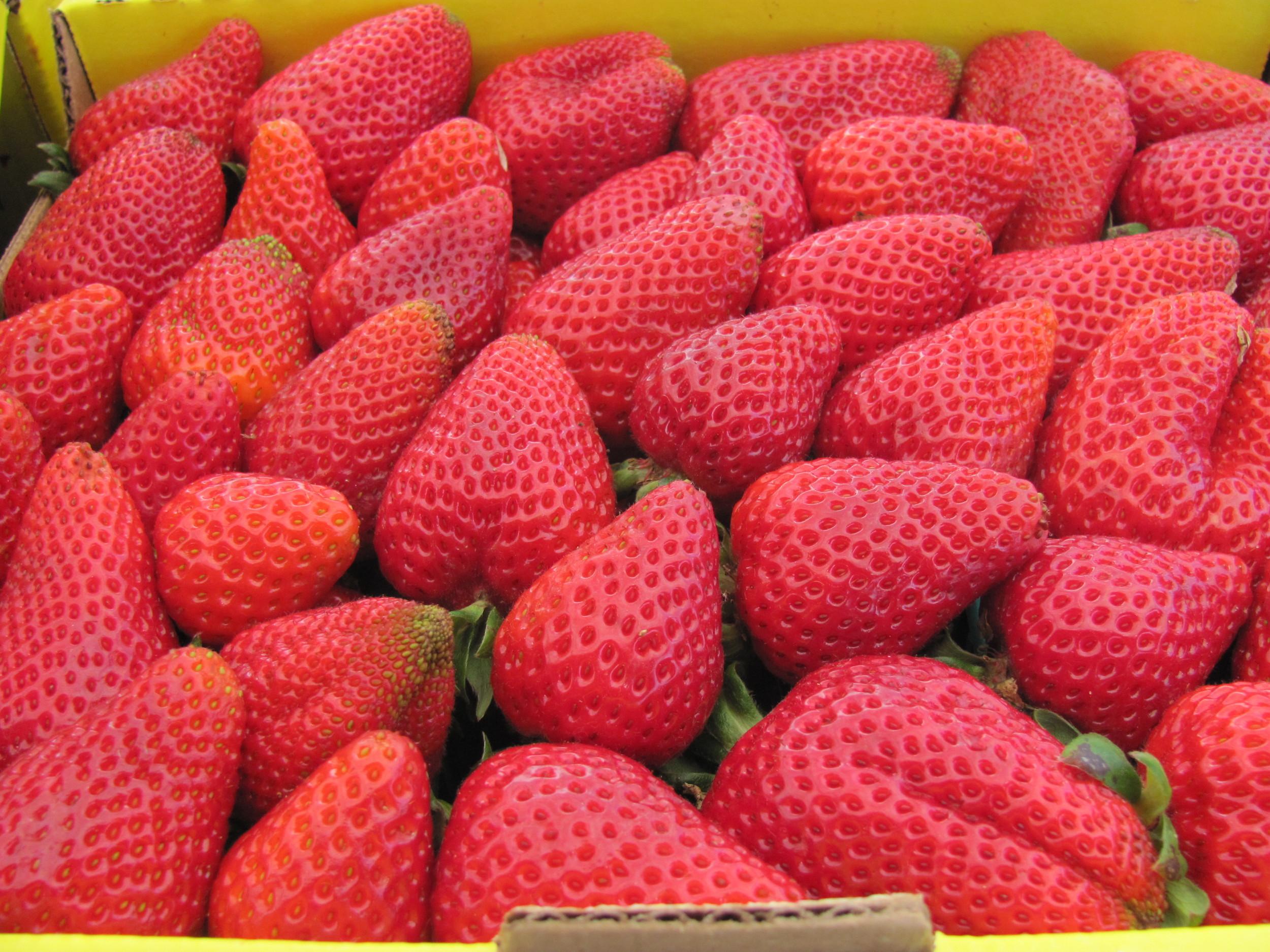 Rossmoor Farmers' Market Strawberries