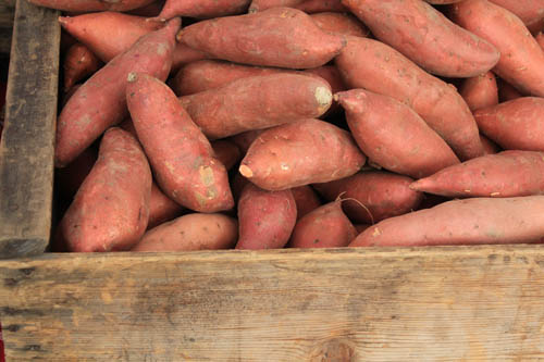 San Leandro Farmers' Market at Bayfair Center sweet potatoes