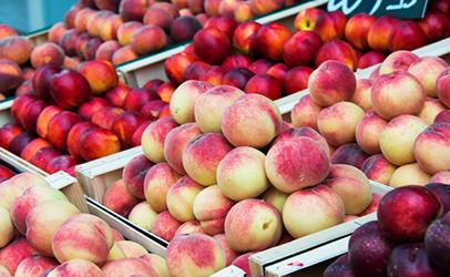 Peaches-and-nectarines.jpg