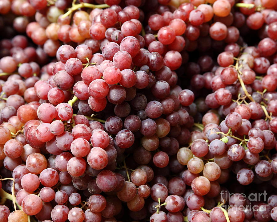 red-grapes--5d17066-wingsdomain-art-and-photography.jpg