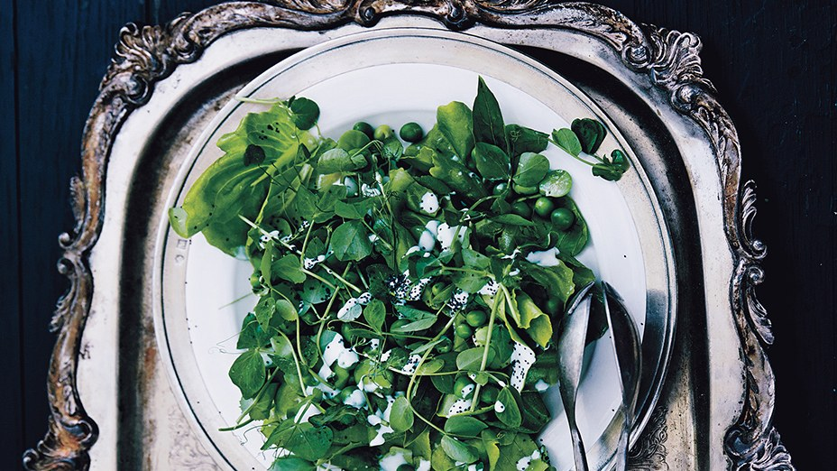 fava-bean-and-pea-salad-with-poppy-seed-dressing.jpg